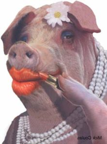 lipstick-pig-illustration