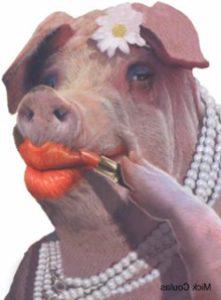 lipstick-pig-illustration