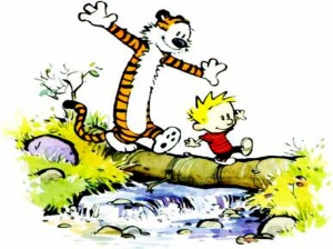 Calvin---Hobbes-calvin--26-hobbes-254155_1024_768