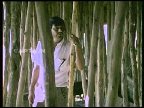 Ek akela is shehar main this song tells us all that is for Aashiyana indian cuisine